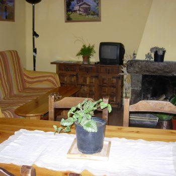 menjador dapartament Pesso amb llar de foc